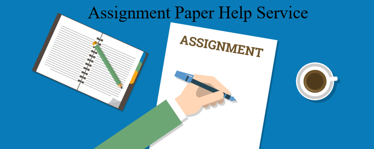 Assignment Paper Help Service