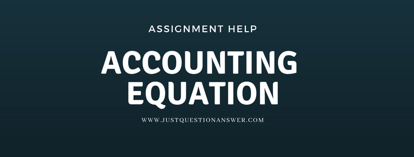 accounting equation assignment help