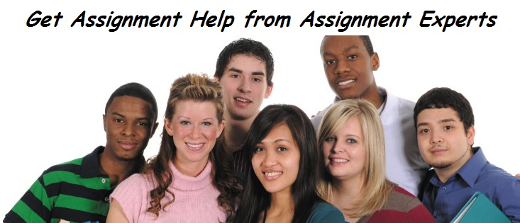 assignment-help-from-best-assignment-experts